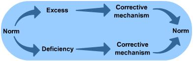 General principles of Homeostasis | S-cool, the revision website