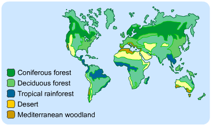 Image result for ecosystems
