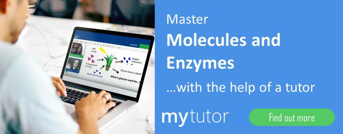 how enzymes work in the home and in industry essay essay Home papers effect of ph on invertase activity  determination of the effect of ph on invertase  invertase is also used in the confectionery industry where.